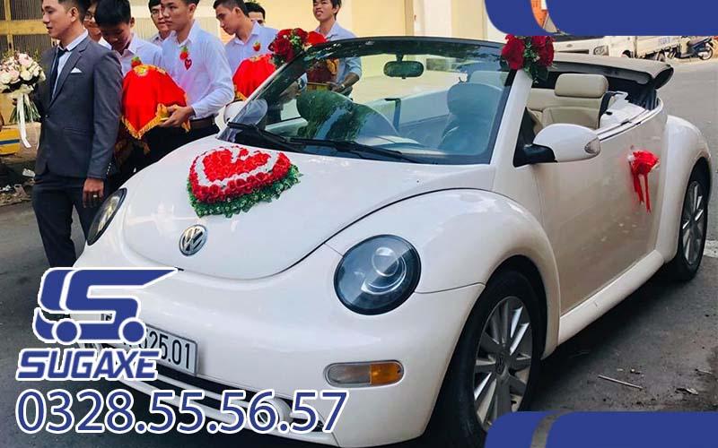 Thuê xe du lịch 4 chỗ Beetle